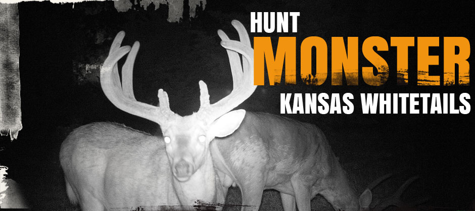 Hunt MONSTER Kansas Whitetails